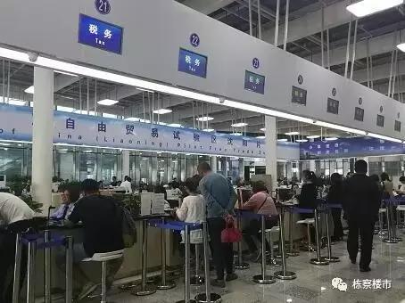 自贸区福利:除了企业注册 战狼女神卢靖姗即将来沈!