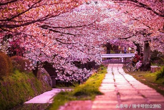 2017日本注册公司新流程及所需费用